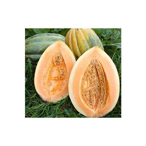 Cucumis melo 'Zugdidi Giant' - Óriás pézsma sárgadinnye 5db mag/csomag