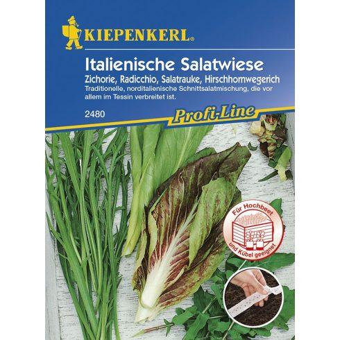 Vetőszalag Olasz salátarét 4x2,5 m Kiepenkerl